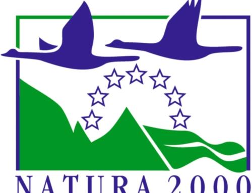 Nasce tag 'Costa Mare': inclusi Borsacchio e Torre del Cerrano