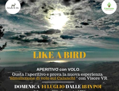 Domenica 14 Luglio 2019 – Esperienza di Volo sui Calanchi – Like a Bird